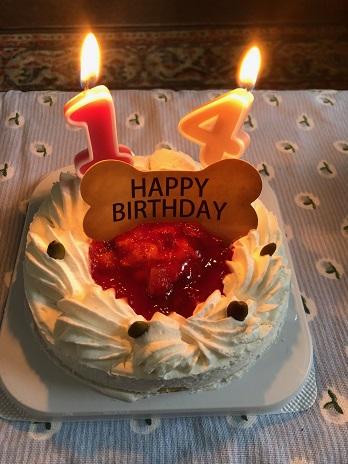 お誕生日ケーキ19.5.14.jpg